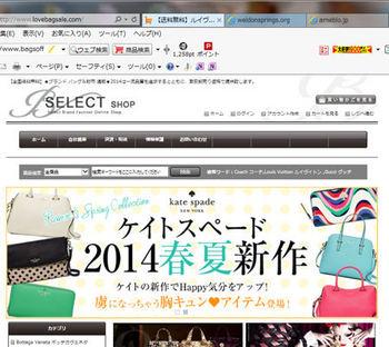 sagi_site1.jpg